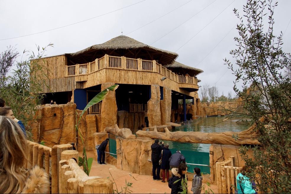 Zooparc de beauval fa tes rugir vos s minaires r unir for Chambre zoo de beauval