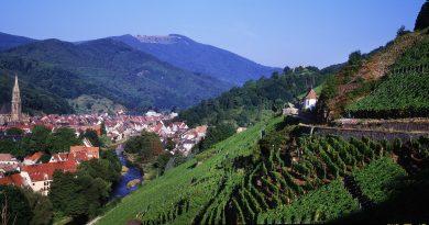 réunir Meet in Alsace